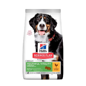 Hills Science Diet Youthful Vitality 7+ Canine Large Breed 10kg
